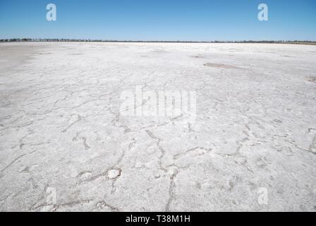Salt Lake Lake Grace Western Australia - Stock Image