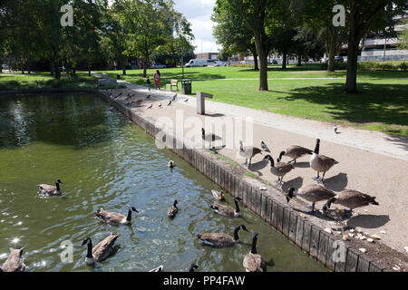 Town Centre Gardens, Stevenage, Hertforshire - Stock Image
