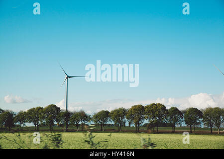 Scenic View Of Field Against Clear Blue Sky - Stock Image