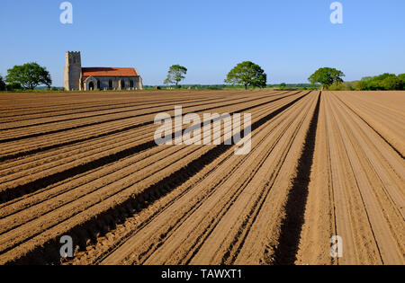 ploughed field furrows, saxthorpe, north norfolk, england - Stock Image