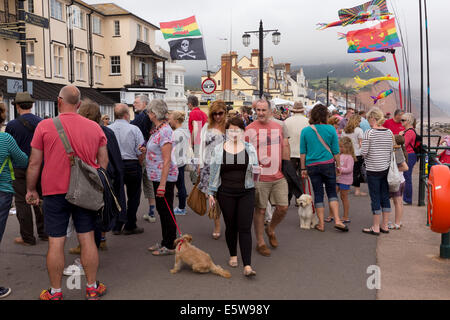Crowds on the sea front  promenade at Sidmouth Folk Festival 2014. - Stock Image