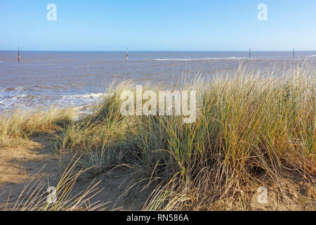 A view from the sand dunes over the beach to the sea on the Norfolk coast at Sea Palling, Norfolk, England, United Kingdom, Europe. - Stock Image
