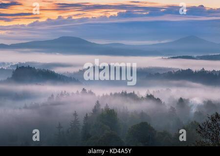 foggy morning over the Bohemian Switzerland - Stock Image