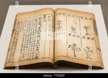 Ben cao gang mu (Compendium of materia medica) by Li Shizhen during the Ming Dynasty (1368 AD-1644 AD). National Museum of China - Stock Image
