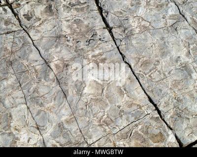 Dried up mud formed into mudstone rock, Glen Scaladal Bay (Cladach a Ghlinne) near Elgol, Isle of Skye, Scotland, UK - Stock Image