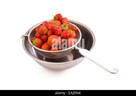 Fresh tasty strawberries in a colander isolated on white - Stock Image