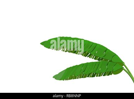 Bright green leaf of banana palm. Tropical theme. Colorful graphic design for print, picture or postcard. illustration - Stock Image