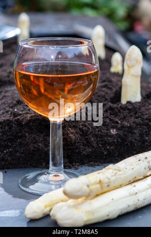 New harvest of  white asparagus vegetable in spring season and glas rose wine, white heads of asparagus growing up from the ground on farm close up - Stock Image