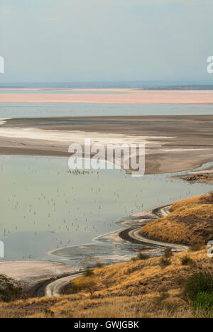 Vertical andscape of Lake Magadi with flamingos and salt/mineral deposits on the shore. Sun rays. Kenya, Africa. - Stock Image
