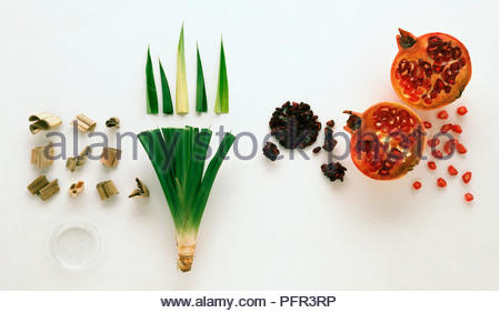 Forms of the Spices Screwpine and Pomegranate - Stock Image