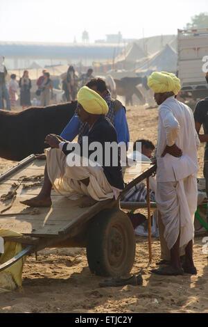 Rajasthani men with yellow turbans, Pushkar, Rajasthan, India - Stock Image