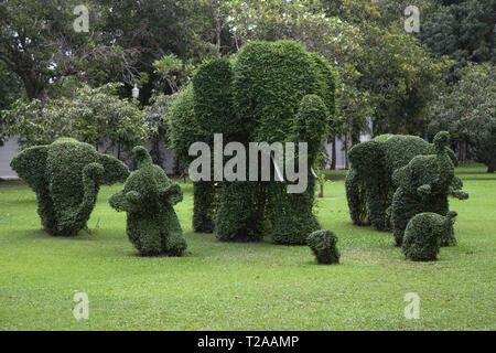 Topiary of Elephants at Bang Pa-In Palace, Ayutthaya, Thailand. - Stock Image