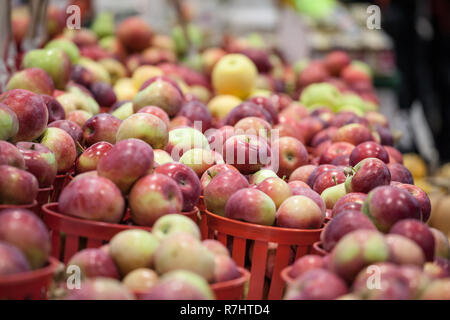 Buckets of Honeycrisp Apples for sale on a Canadian market in Montreal. It is a popular autumn fruit, a species developped specifically in America, as - Stock Image