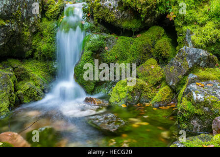 Small waterfall and green mossy rocks taken by long exposure - Stock Image