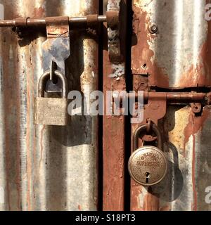 Two old padlocks on metal door - Stock Image