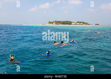 Maldives snorkelling - A group of tourists snorkelling , Veligandu Island, Rasdhoo atoll, The Maldives, Asia - Stock Image
