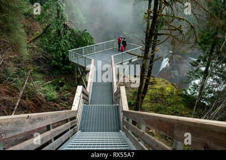 Elk Falls Provincial Park, Campbell River, Vancouver Island, BC, Canada - Stock Image