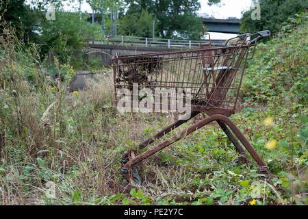 Dumped supermarket trolley, River Brent, near Brent Reservoir, Brent, London, United Kingdom - Stock Image