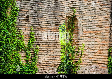 Olympia, Greece. The site of the Olympic Games in classical times. The Villa of Nero. - Stock Image