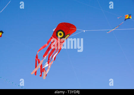 A multicolored kite flying against a blue sky on a beach side - Stock Image