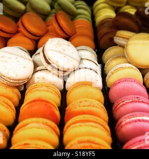 Rows of Macaroons in shop - Stock Image
