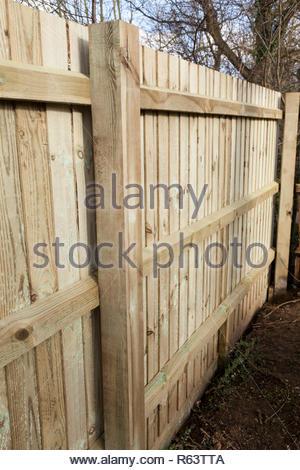 Feather edge fence - Stock Image