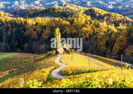 The heartshaped road at sunset. Spicnik, Kungota, Drava region, Slovenia. - Stock Image