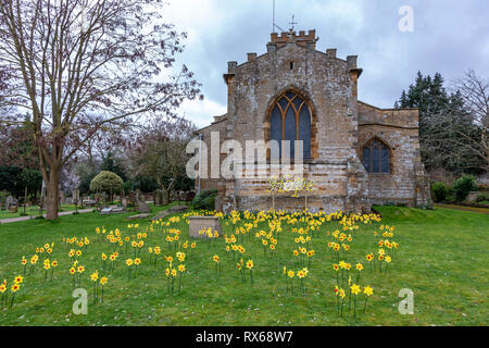 Northampton. U.K. 8th March 2019. Handmade Daffodils in the church yard of St Peter and St Paul in Abington Park. Signifies  hope for the world, the hope for the future and the hope of the resurrection of Easter and the charity that's being supported is Marie Curie, whose nurses bring hope to those suffering from cancer. Daffodils being the logo for Marie Curie too. . Credit: Keith J Smith./Alamy Live News - Stock Image