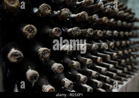 Extremely old wine bottles in the process of aging - Stock Image
