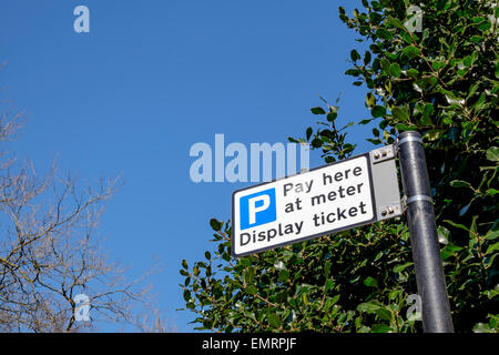 Pay here at meter parking sign with blue sky and green tree in background, Glasgow, Scotland, UK - Stock Image