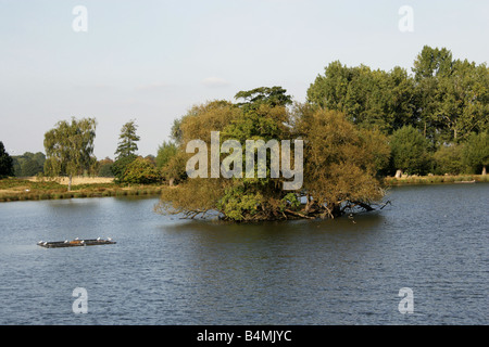 The Ponds, Richmond Park, Surrey, UK - Stock Image
