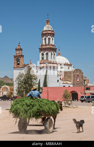 A horse cart passes the Iglesia de San Diego De Alcalá church at the Hacienda de Jaral de Berrio in Jaral de Berrios, Guanajuato, Mexico. The abandoned Jaral de Berrio hacienda was once the largest in Mexico and housed over 6,000 people on the property and is credited with creating Mescal. - Stock Image