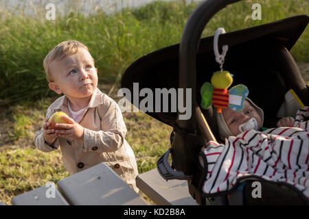 Baby boys (18-23 months, 0-1 months) - Stock Image