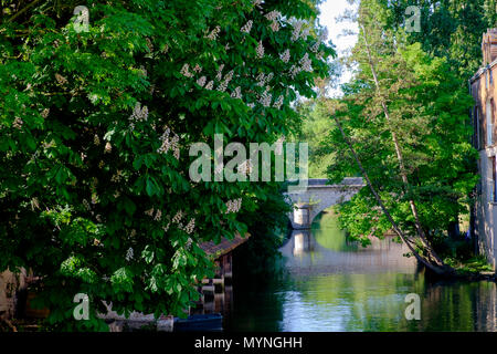 River Eure in the old town of Chartres France - Stock Image