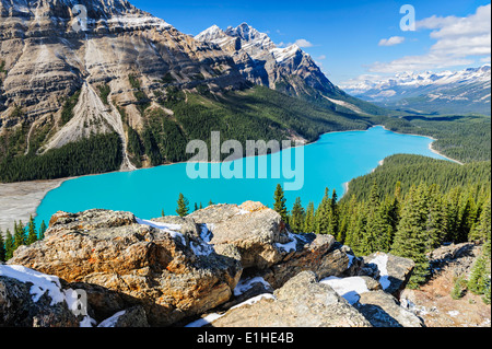 Peyto Lake in the Canadian Rocky Mountains in Banff National Park, Alberta - Stock Image