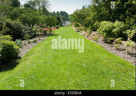 Long sloping lush green lawn in the gardens of Aberglasney House Carmarthenshire Wales - Stock Image