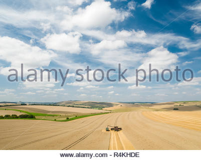 Harvest aerial landscape of combine harvester cutting summer wheat field crop with tractor trailer and blue sky on farm - Stock Image