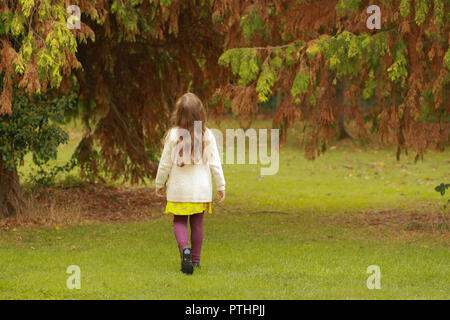 Girl walking in a park looking up at a tree, on an autumnal day. - Stock Image