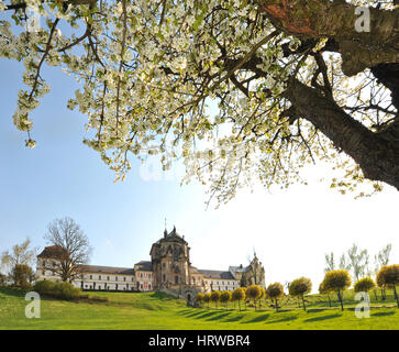 Kuks, Czech Republic - Baroque hospital and church with foreground of cherry tree in bloom. - Stock Image
