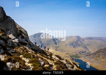 Hikers hiking climbing up Mt Tryfan north ridge above Llyn Ogwen Lake in mountains of Snowdonia National Park. Ogwen, Conwy, Wales, UK, Britain - Stock Image