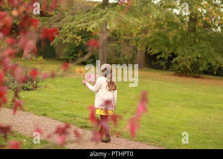 Girl walking in a park, on an autumnal day, holding a leaf. - Stock Image