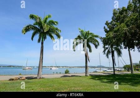 Scenic view of the foreshore with boats and palmtrees, Cooktown, Far North Queensland, QLD, FNQ, Australia - Stock Image