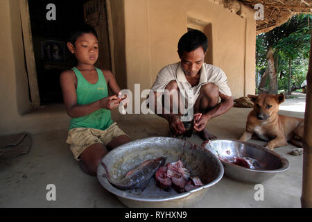 BANGLADESH Farid Pathang and son Homar of the Garo tribal minority, clean fish ready for cooking, Haluaghat, Mymensingh region photo by Sean Sprague - Stock Image