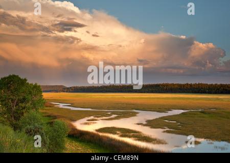 Lower Lake Mary, summer monsoon rainy season, Coconino National Forest, south of Flagstaff, Arizona, USA - Stock Image
