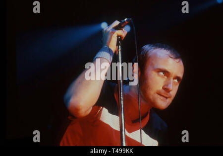 PHIL COLLINS English rock musician about 1981 - Stock Image