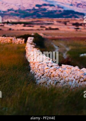 Stone walls on island of Pag in Croatia - Stock Image
