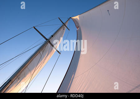 Sails from a sail boat - Stock Image