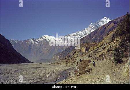 Trekkers walk down Kali Gandaki world's deepest valley on Annapurna circuit Himalayas Nepal Dhaulagiri Peak on right - Stock Image