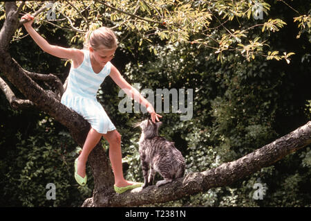 Young Blond Girl Pets Her Pet Kitty while Sitting in a Tree, USA - Stock Image