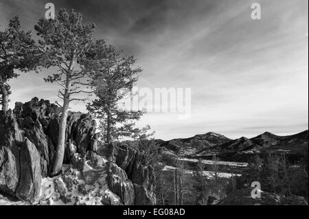 Black and White, Rocky Mountain National Park, winter, Landscape - Stock Image